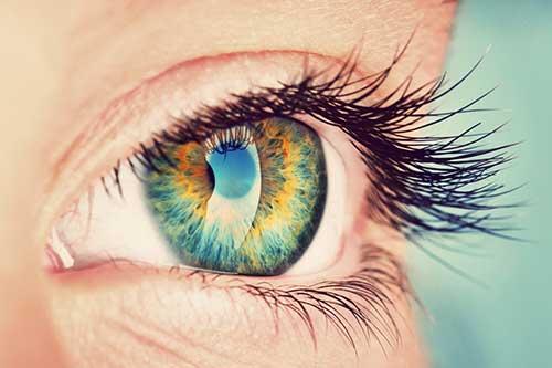 Hypnose et thérapie IMO